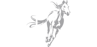 The Shops At Willow Park
